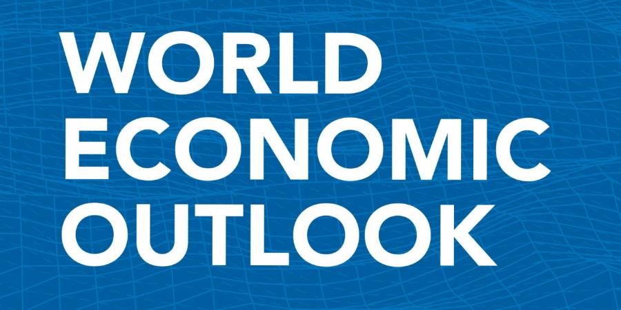 【新冠肺炎】IMF大削全球經濟預測  料今年香港經濟倒退4.8%