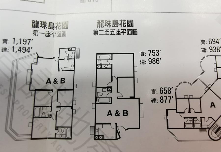 龍珠島花園三房一套平面圖