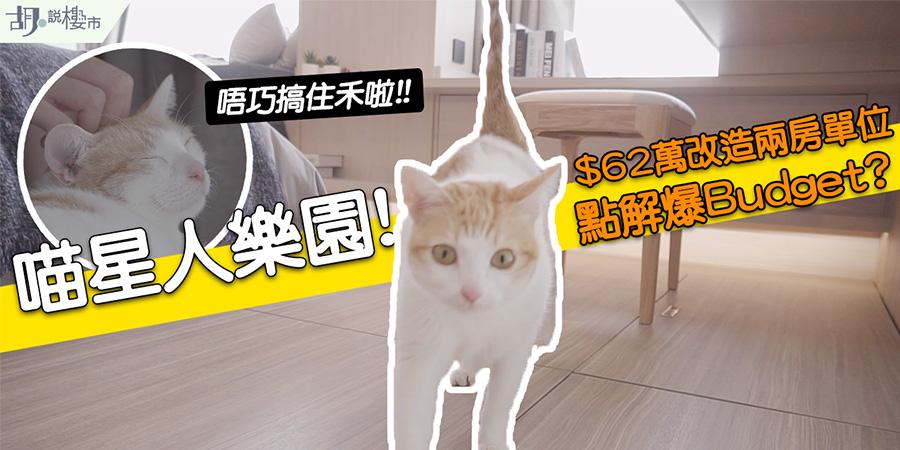 【貓奴之家】$62萬改造原則兩房戶型! 點樣配合喵星人要求? (附影片)