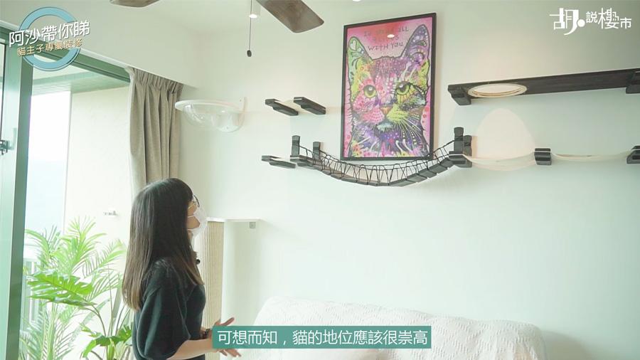 因為梳化背掛上很大幅貓貓的畫像,附近裝有掛牆的貓貓耍樂裝置